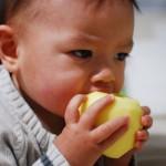Il a une dent (enfin 7 maintenant) contre les pommes.
