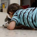 Bisous le chat !