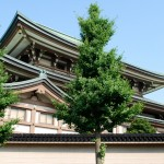 Premiers pas à Kanazawa... wow !