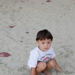 Chenti triste dans le sable