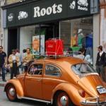 The Cocci ! C'est Roots